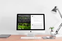 3Ps Website